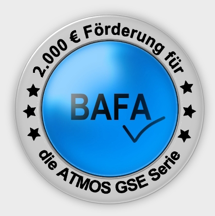 BAFA Holzvergaser Button GSE